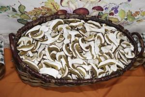 nesti-conserve-funghi