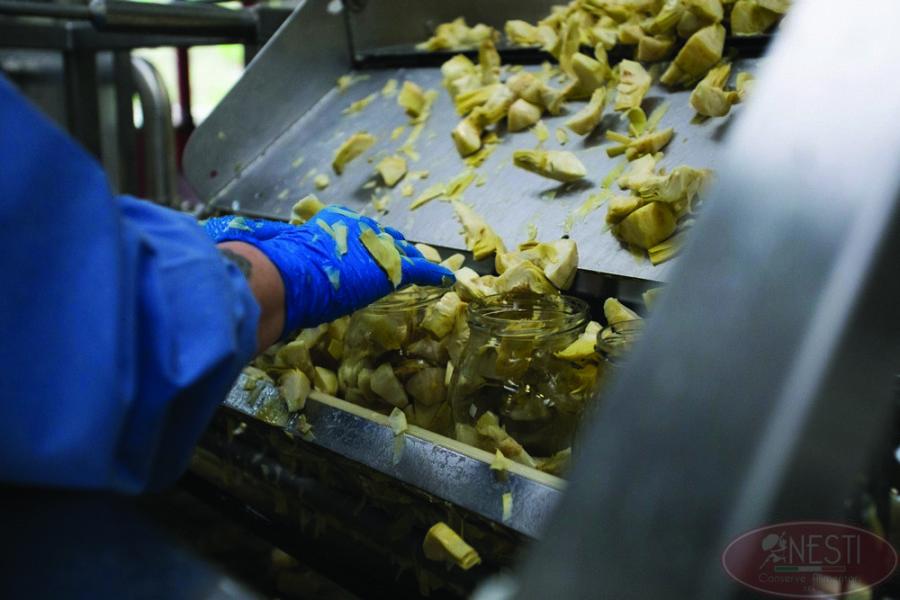 Nesti conserve funghi carciofi
